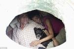 Cặp vợ chồng Colombia sống trong đường cống 22 năm cùng chó cưng
