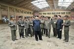 Triều Tiên khai trương câu lạc bộ cưỡi ngựa hạng sang tại Bình Nhưỡng