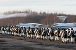Nga tập trận trước thềm cuộc trưng cầu dân ý ở Crimea