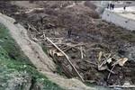 Lở đất tại Afghanistan, hơn 2000 người có khả năng thiệt mạng