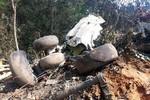 TTX Lào: Máy bay quân sự Lào gặp nạn sáng ngày 17/5