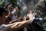 Biểu tình phản đối đảo chính lan rộng ở Thái Lan