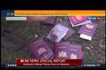 Nhiều tình tiết mới hé lộ nguyên nhân thảm kịch MH17