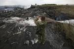 Yêu cầu mở cuộc điều tra quốc tế vụ MH17 bị bắn hạ ở Ukraine