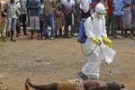 Thi thể người chết vì Ebola xuất hiện hàng ngày trên đường phố Liberia