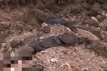 Phe ly khai Ukraine phát hiện các ngôi mộ bí mật ở Donetsk