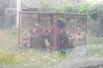 Video: Lính Ukraine say rượu bị nhốt trong lồng thú