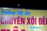 """""""Cường đô la"""" bán xôi, """"Hồ Ngọc Hà"""" buôn mực?"""