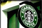 Lỗ như Starbucks: Chỉ có thể là trốn thuế?