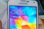 """Nhan nhản Samsung Galaxy S5 nhái """"như thật"""""""