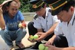 10 ngày qua, hoa quả Trung Quốc không nhập vào Lạng Sơn