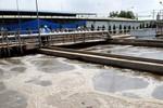 Bộ Công Thương hỏa tốc lập đoàn công tác đến Formosa sau vụ cá chết