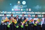 Các trường đại học, cao đẳng ở Đà Nẵng có cơ hội tạo thêm 10.000 việc làm