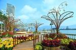 Ngắm đường hoa 17 tỷ đồng ở Đà Nẵng