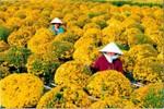 Đặc sắc lễ hội hoa xuân Sa Đéc 2013