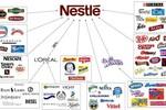 Nestlé Việt Nam: 18 năm hoạt động, 14 năm lỗ và những con số bất ngờ