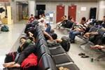 Sau lệnh Bộ trưởng Thăng, các hãng bay có gì thay đổi?