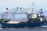 """Đại gia xin ưu đãi khủng mua tàu cá 30 tuổi: """"Sớm vào bãi đồng nát"""""""