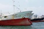 Bộ Nông nghiệp bác đề xuất nhập 100 tàu cá của đại gia BĐS