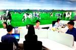 Vinamilk đứng thứ 2 trong Top 100 nơi làm việc tốt nhất Việt Nam