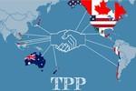 Công bố toàn văn Hiệp định TPP được dịch sang tiếng Việt