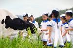 Rạng rỡ Vươn cao Việt Nam