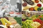 20% số cơ sở bị kiểm tra vi phạm an toàn thực phẩm