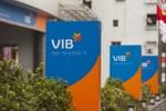 Nguyên thủ quỹ Ngân hàng VIB bị bắt
