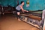 Ô nhiễm môi trường dự án sân golf tại Quảng Ninh là trách nhiệm của FLC