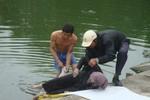 Phát hiện xác chết nổi trên hồ cạnh Đại học Y Hà Nội