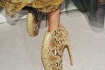Nhật ký tỉ mẩn và lọ mọ: Chủ nhân đôi giầy Lady Gaga quái đản