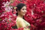 Ngọc Hân thướt tha giữa ngàn hoa đào nở rộ