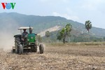 Các giải pháp phòng chống hạn mặn cho vựa lúa quốc gia