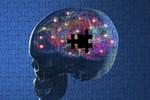 Những thói quen gây teo não, suy giảm trí nhớ
