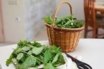 5 cách chữa sỏi thận từ nguyên liệu tự nhiên