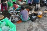 """Công ty My Way """"tuồn"""" thực phẩm bẩn vào trường học ở Hà Nội"""