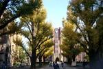 Du học Nhật: Lựa chọn tốt cho tương lai