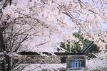 Học bổng của Chính phủ Nhật Bản năm 2014