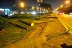 Hà Nội: Hàng loạt cây cau vua gần SVĐ Mỹ Đình bị đốn hạ