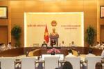 Chính phủ chuẩn bị báo cáo Ủy ban Thường vụ Quốc hội các dự án luật