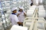 Sợi Việt Nam tiếp tục bị kiện bán phá giá tại Ấn Độ