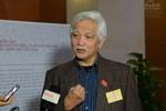 Đại biểu Dương Trung Quốc: Nói giàu nhờ buôn chổi đót chỉ là giả dối