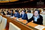 Quốc hội quyết lùi hai năm thực hiện Chương trình, sách giáo khoa phổ thông mới