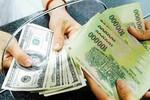 Hạn chế tình trạng đô la hóa, nâng cao vị thế đồng Việt Nam
