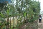 Vụ tự tử rúng động làng quê: 2 xác chết 4 mạng người