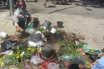 Tiểu thương đập chậu, bỏ cành đào, hoa cảnh vào xe rác