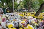 Trước thềm năm mới, hoa kiểng bị vứt la liệt khắp chợ hoa ở Sài Gòn