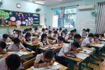 Thành phố Hồ Chí Minh công bố kế hoạch tuyển sinh các lớp đầu cấp