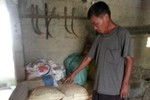 Nghệ An: Cán bộ xóm thu gạo hộ đói, bán phân hỗ trợ hộ nghèo