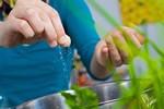 Chế độ ăn giảm muối và các bệnh mạn tính không lây